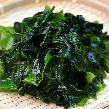 FSS Wakame Bioferment Advanced