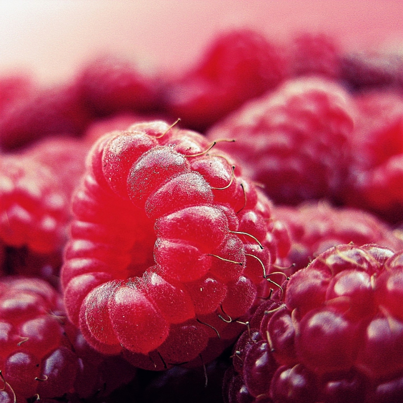 FSS Raspberry Oil