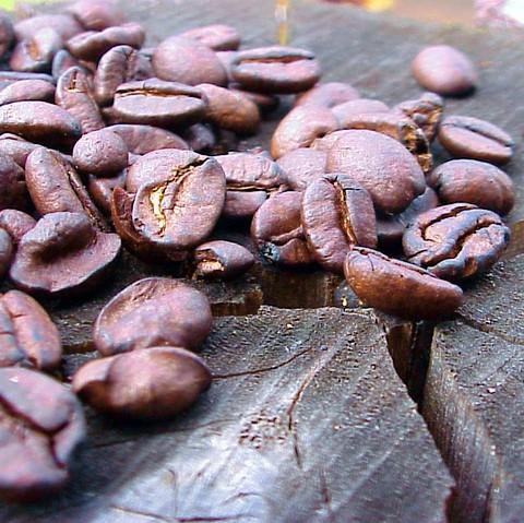 Fss Green Coffee Bean Powder